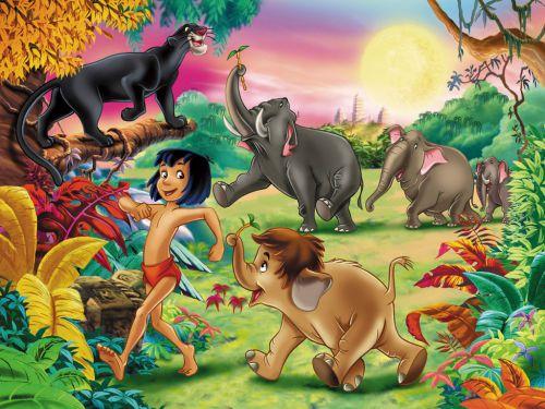Jungle Book thema als rode draad bij de Welpen